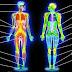 Cara Mengatasi Radang Sendi, Cedera Otot, Tendon dan Ligamen Yang Alami Dan Terbukti Ampuh