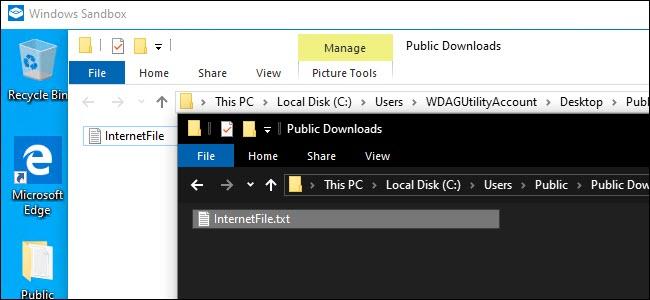 Windows Sandbox Explorer و Explorer System Host يعرضان ملفًا مشتركًا