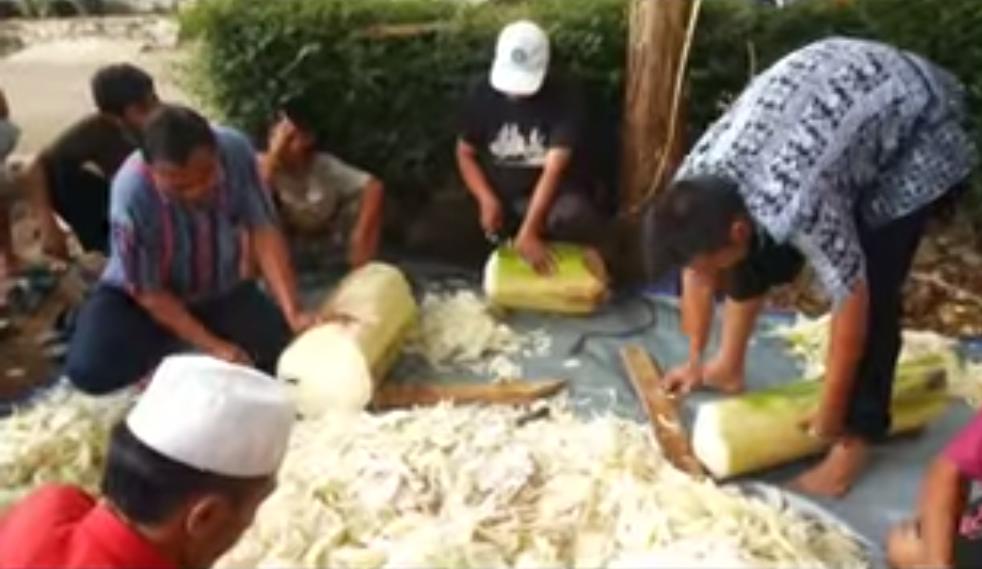 Cara Mudah Membuat Sendiri Pakan Fermentasi Itik – Bebek dengan SOC-HCS