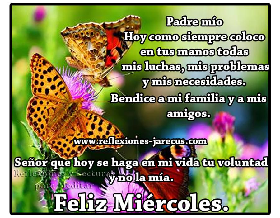 Feliz miércoles✅Padre mío, hoy como siempre coloco en tus manos todas mis luchas, mis problemas y mis necesidades. Bendice a mi familia y a mis amigos.