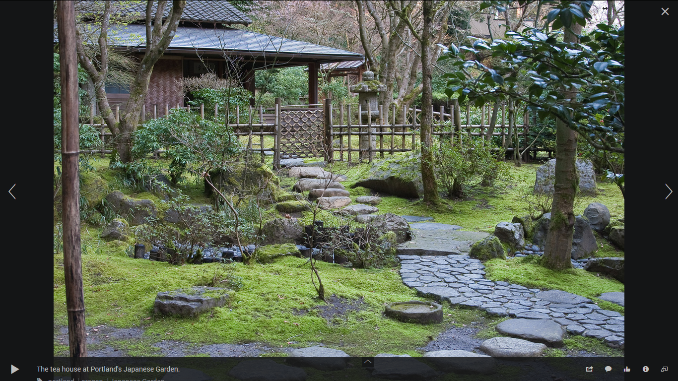 Backyard Japanese Tea House Garden