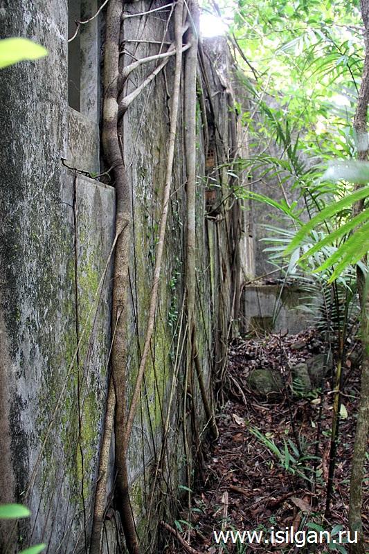 Черный Дворец. Национальный парк Бокор. Камбоджа