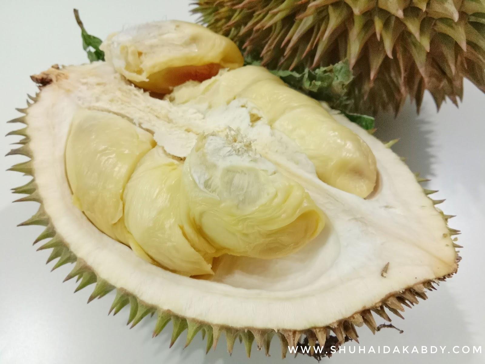 Buah Bermusim, Durian, Durian Kampung