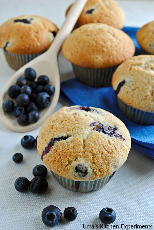 blue-berry-muffins-2