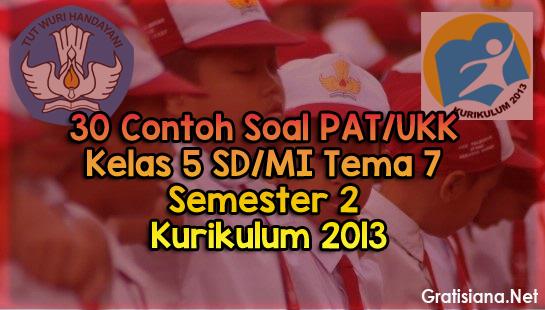 Contoh Soal PAT/UKK Kelas 5 SD/MI Tema 7