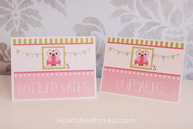 Para hacer Invitaciones, Tarjetas o Marco de Fotos para Imprimir Gratis de Búho en Rosa.