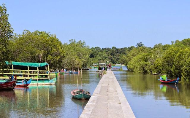 Bedul Mangrove
