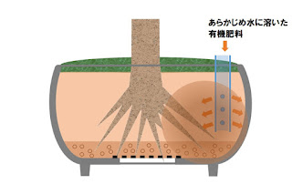 鉢の中に有機液体肥料を入れる