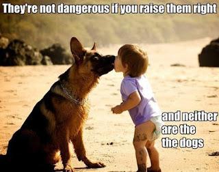 dangerous dog meme