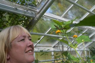 In de plantenkas