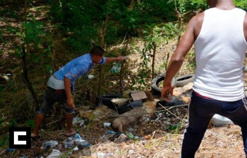 Los cadáveres de más de 20 perros fueron lanzados en carretera de Santo Domingo Norte