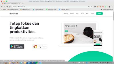 Cara Memblokir Url Situs Web Pada Android dan PC