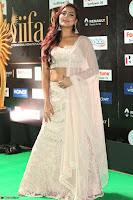 Prajna Actress in backless Cream Choli and transparent saree at IIFA Utsavam Awards 2017 0050.JPG