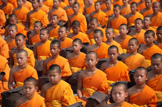 The Scientific Power of Meditation