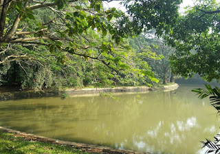 Danau Taman Kota Srengseng