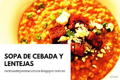Sopa Rica y Nutritiva