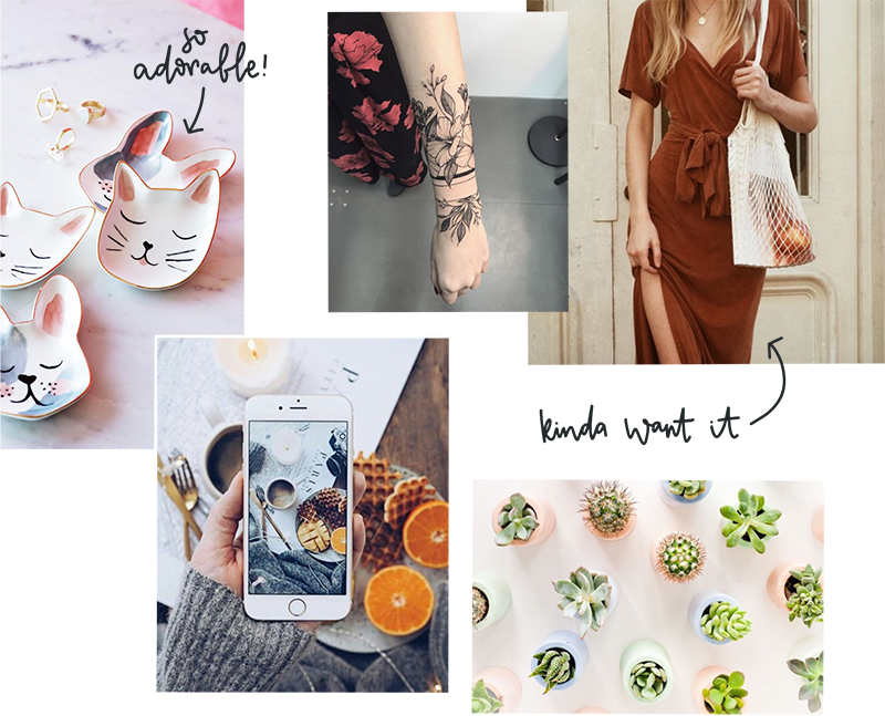 favourites moodboard: cat bowl floral tattoo iphone flatlay wrap dress cacti succulents