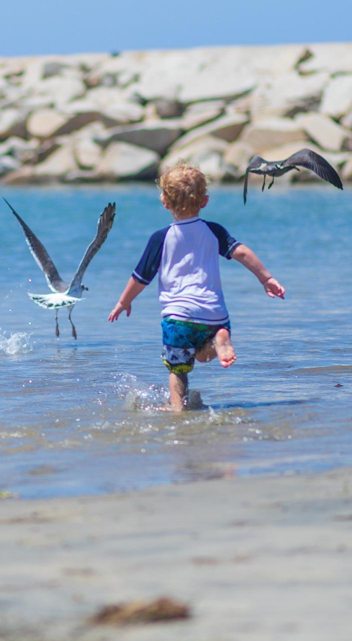 Chasing birds can be fun.