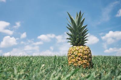 10 health benefits of pineapple