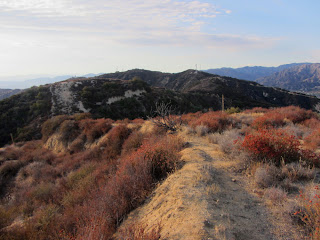 View north toward Verdugo Peak from Summit 2960+