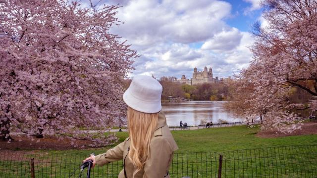 New York : et si vous décidiez de visiter Central Park à vélo ?