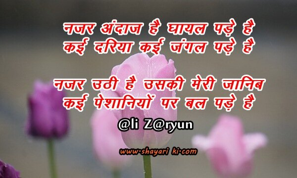 ali zaryun shayari in hindi