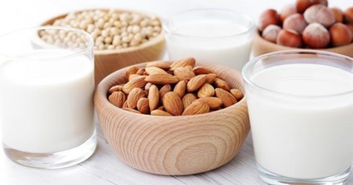 Gusto saludable todo sobre las leches vegetales - Informacion sobre la fibra vegetal ...
