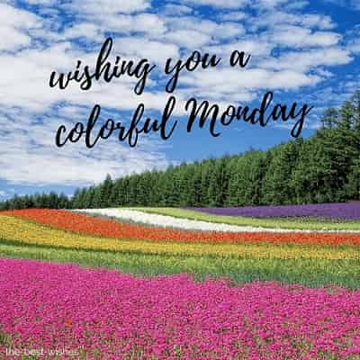 good morning wishing you a very colorful monday