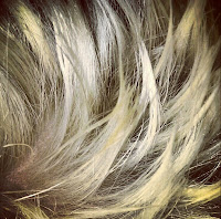 Extreme Definition, Clynol Grip Hairspray
