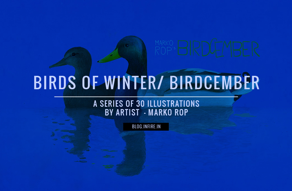 BIRDS OF WINTER / BIRDCEMBER a Series of 30 Illustrations by Artist Marko Rop