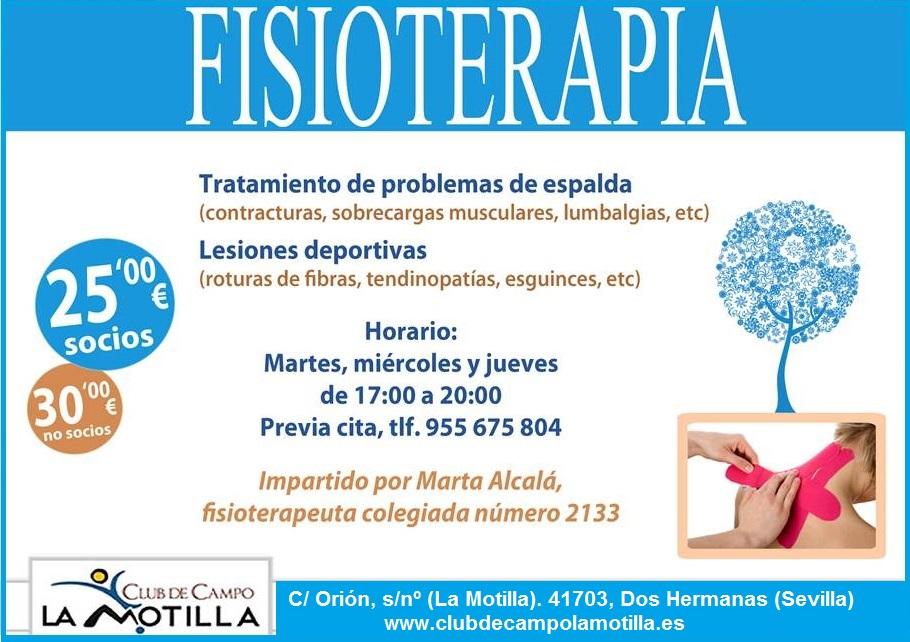 FISIOTERAPIA MOTILLA