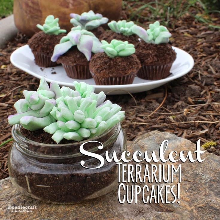 http://www.doodlecraftblog.com/2015/05/edible-succulent-terrarium-cupcakes.html
