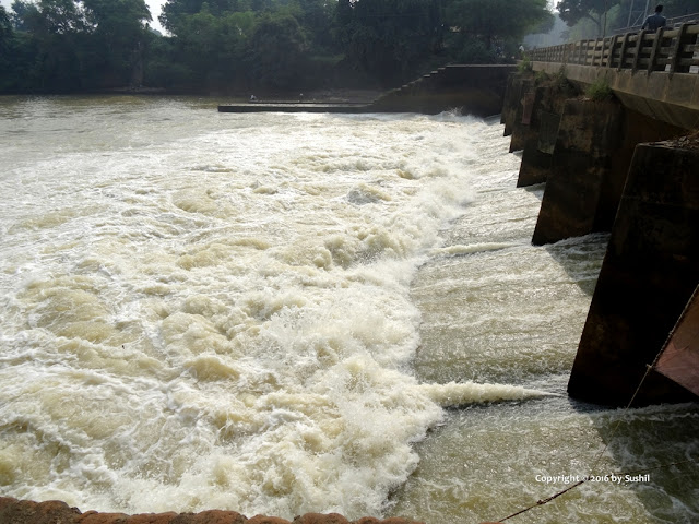 Hydro Electric Power Plant Dam, Dehri On Sone