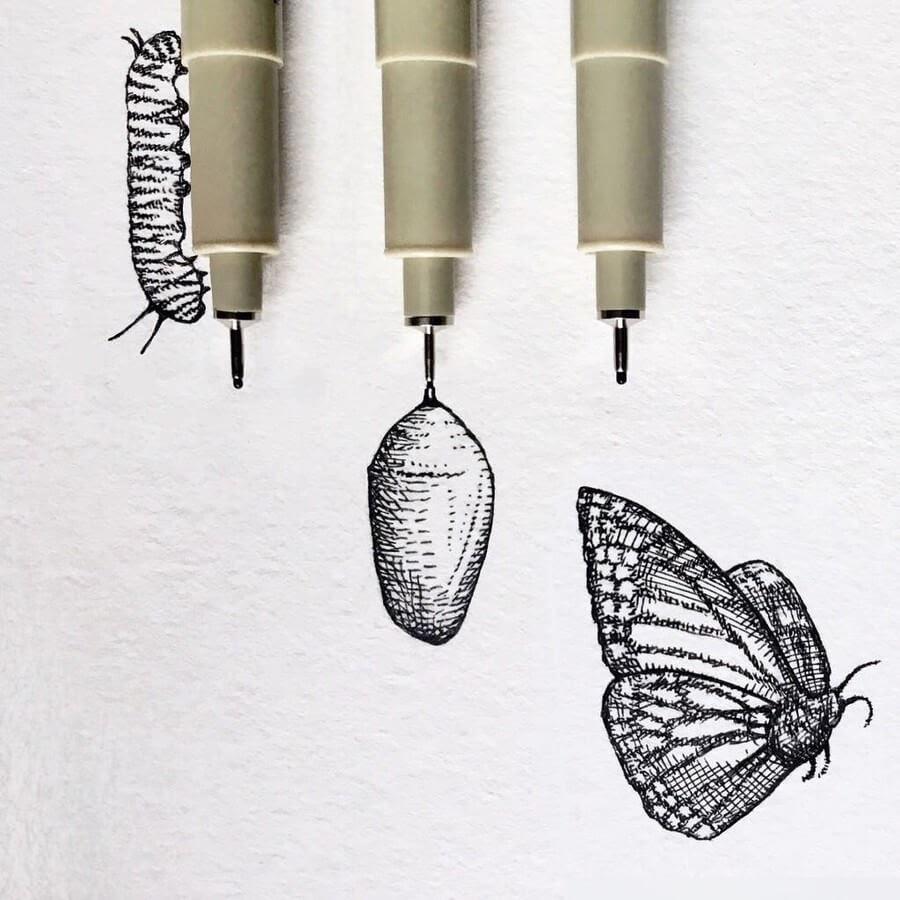 02-The-Caterpillar-August-Lamm-www-designstack-co