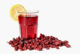 Jugoso zumo de arándanos como medida preventiva de infección de orina