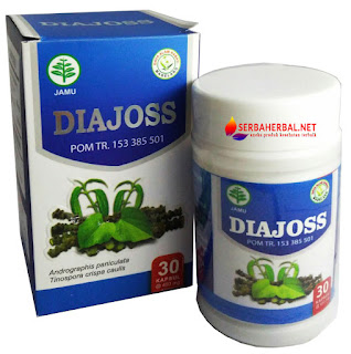diajoss, herbal, obat diabetes herbal, diajoss diabetes,