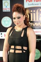 Nikesha Patel in Beautiful Figure Hugging Black Dress  at IIFA Utsavam Awards 2017  Day 2 at  16.JPG