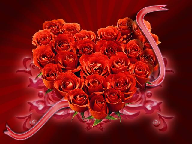 download besplatne slike za mobitele 640x480 čestitke Valentinovo dan zaljubljenih Happy Valentines Day ruže