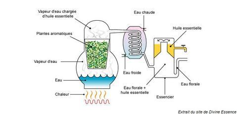 fabrication hydrolat