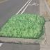 Πράσινη μάζα ξεπήδησε από φρεάτιο στις ΗΠΑ (Βίντεο+Φωτογραφίες)