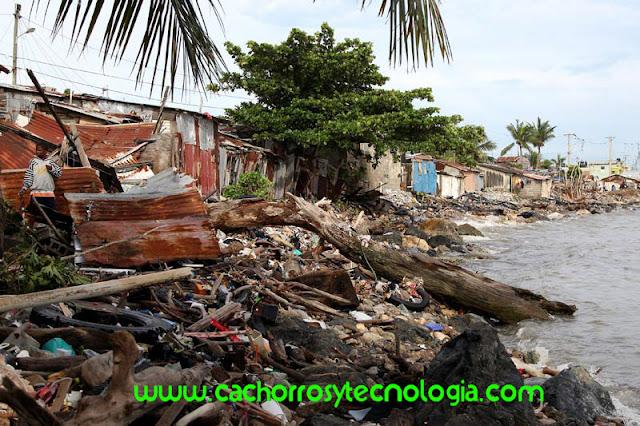 huracan-irma-2017 shurkonrad www.cachorroytecnologia.com 6