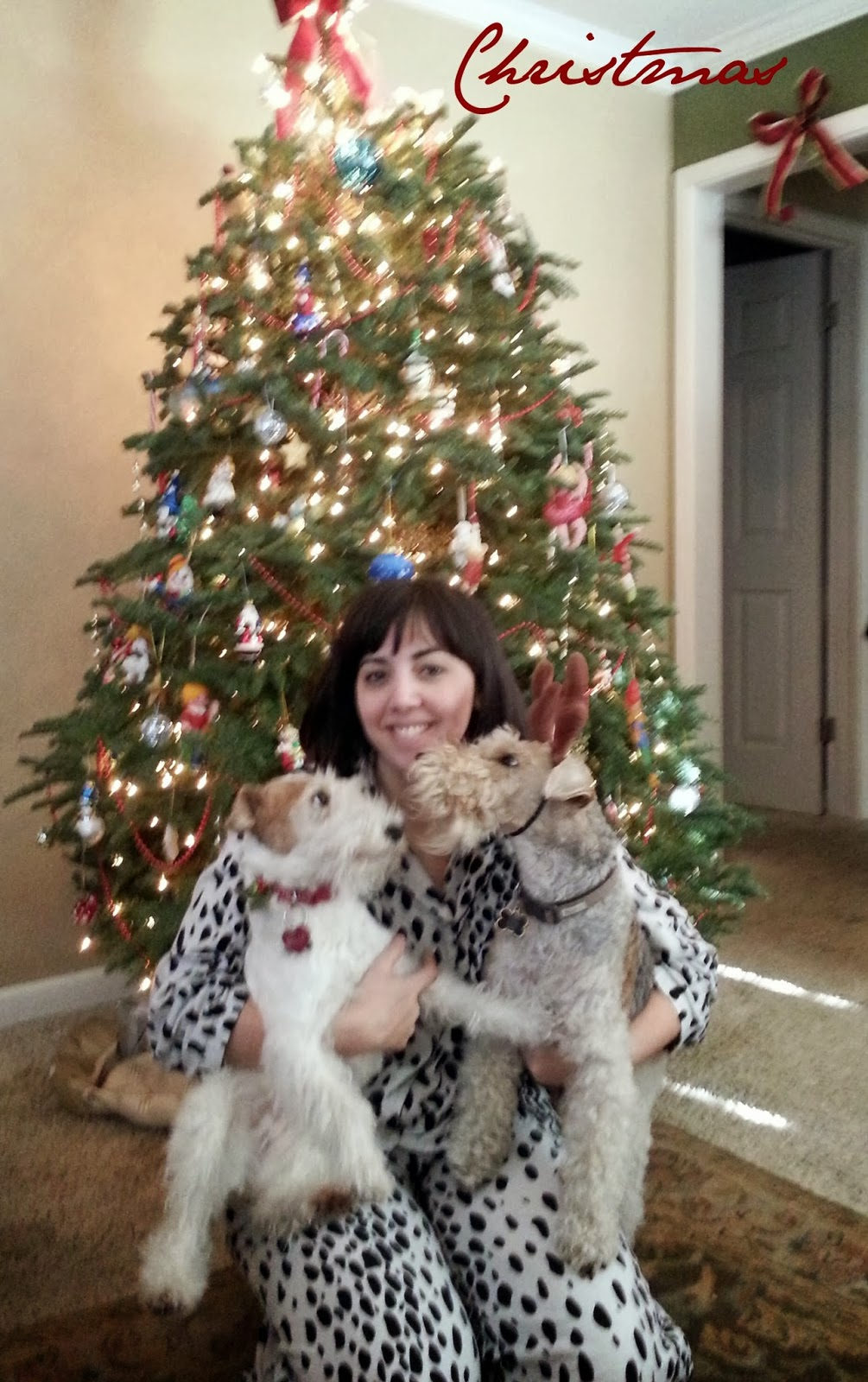 Merry Christmas from the Tipsy Terriers - The Tipsy Terrier blog