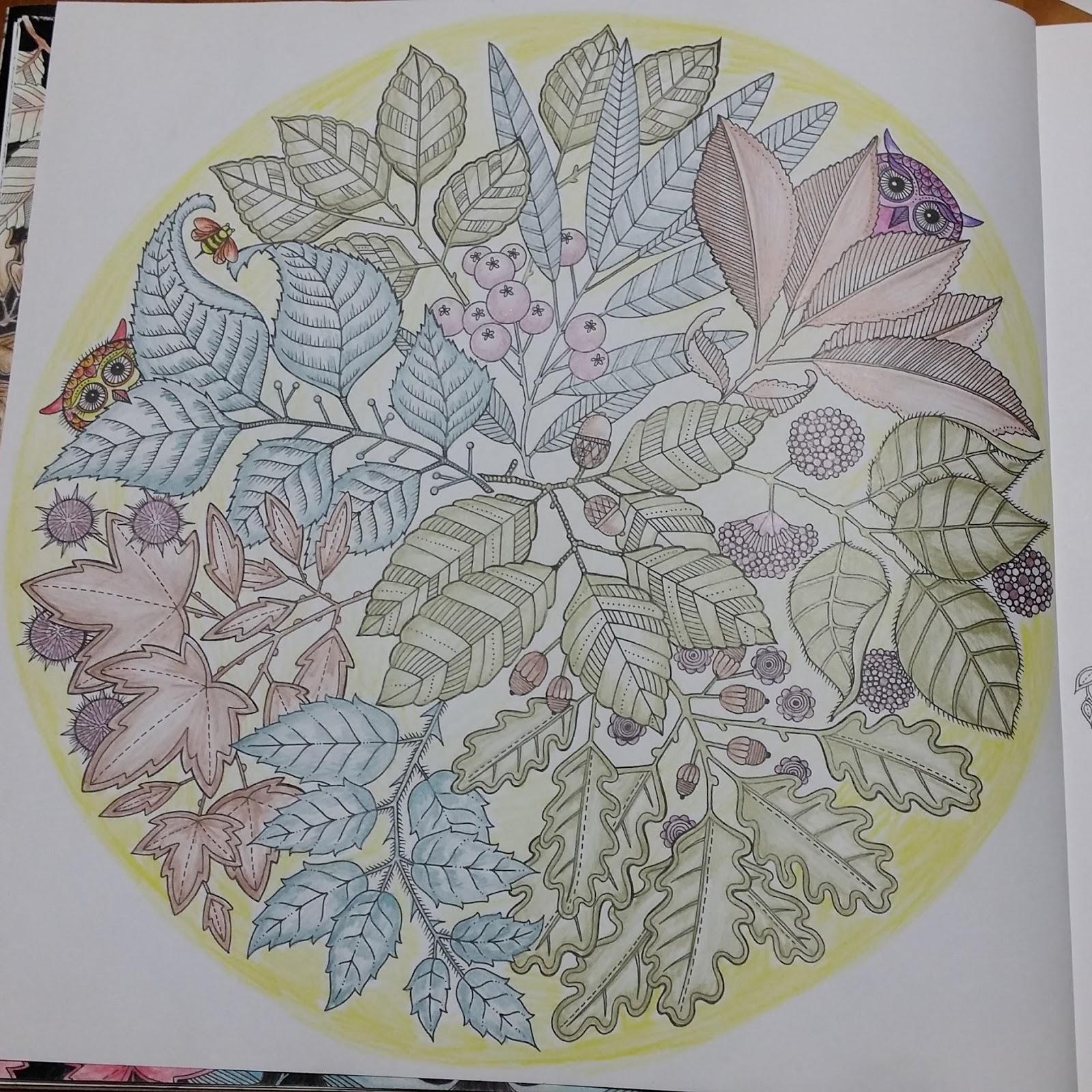 Youngoks Happy Arts Coloring Book Secret Garden 6