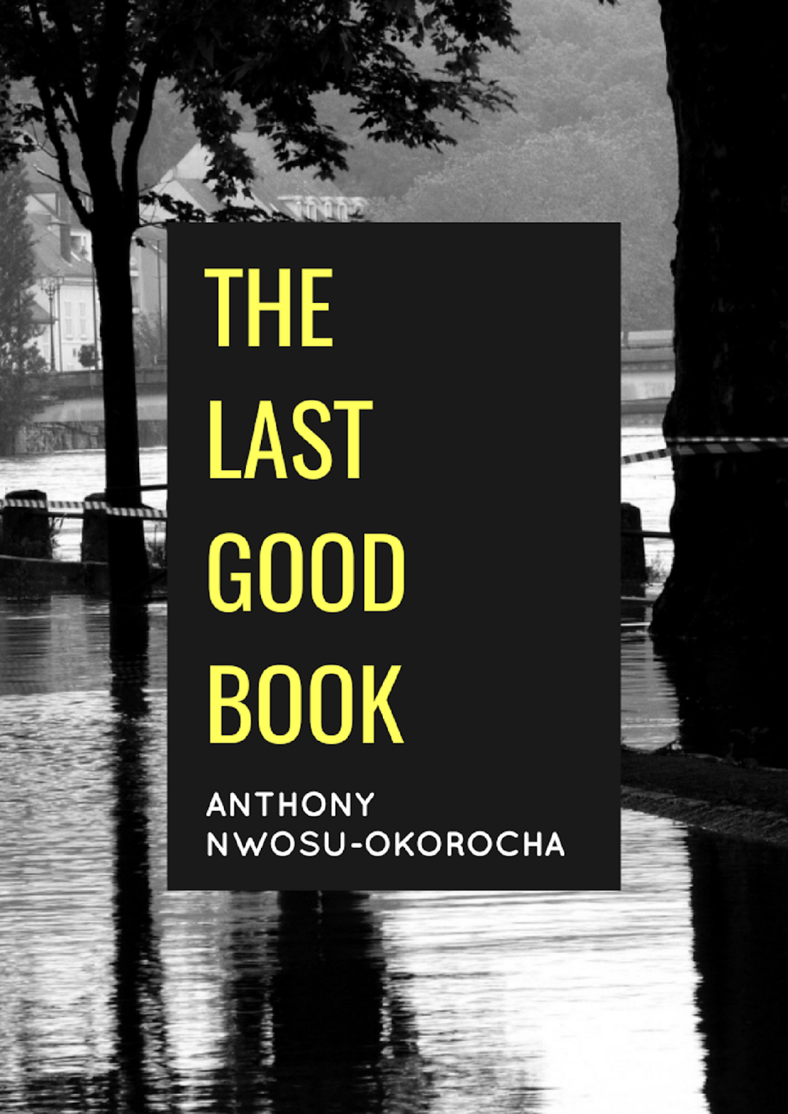 The Last Good Book by Anthony Nwosu-Okorocha