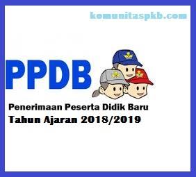 Contoh Program Kerja PPDB 2018/2019 SD, SMP, SMA, SMK