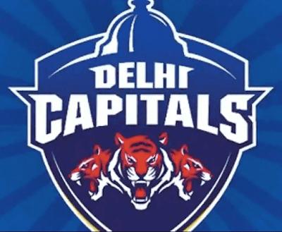 Vivo IPL 2019 Delhi Daredevils (DD) Teams Players List: