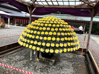 吉方位 弥彦神社