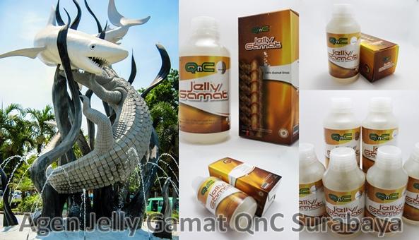 Agen Jelly Gamat QnC Surabaya