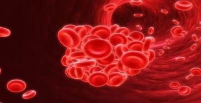 remedios caseros para anemia