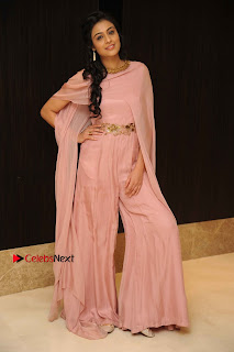 Actress Neha Hinge Stills in a Beautiful Pink Dress at Srivalli Movie Audio Release  0004.jpg